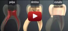 EXCELENTE VÍDEO SOBRE: DENTES DE LEITES E A FORMAÇÃO DE CÁRIES.